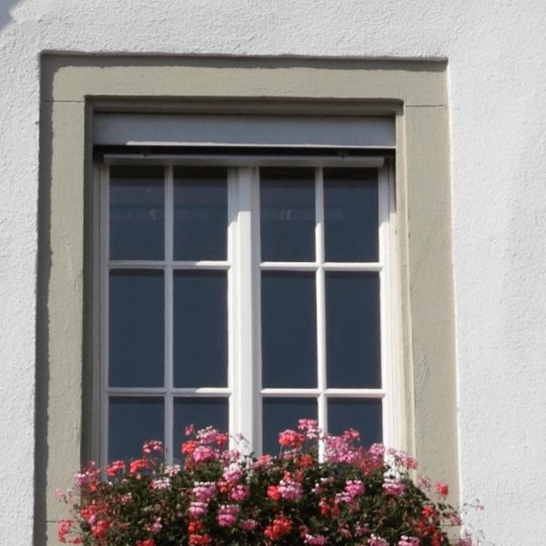 Acryl Fassadenfarbe_Fassade_Gruen-Weiss