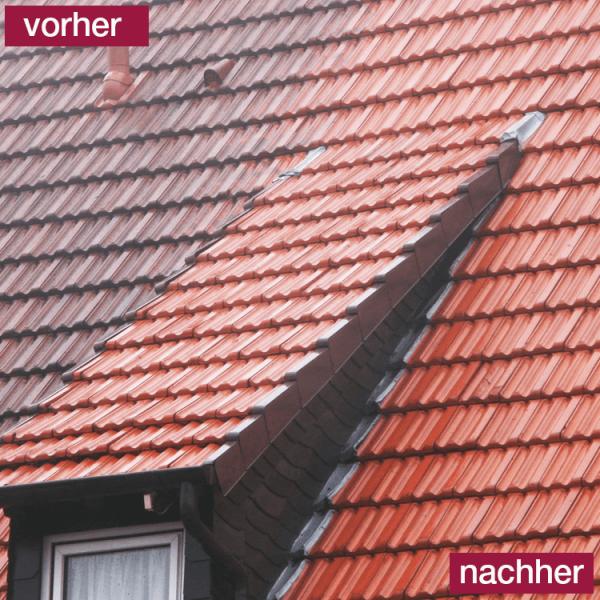 Hoepner Spezial Acryl Dachbeschichtung Tonziegel vorher nachher
